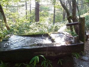 水場です。豊富でおいしい水です。