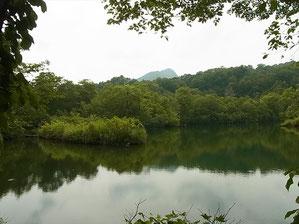 雨飾山を映す鎌池