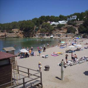 Der Strand Cala Gracio