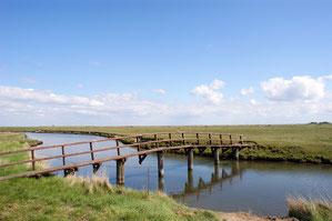 Priele durchziehen die ganze Hallig. Diese Brücke findet Ihr vor der Kirchwarft auf Hallig Hooge