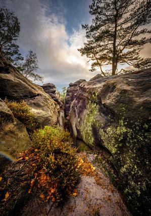 Elbsandsteingebirge, Gohrisch, KAps