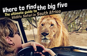 Where to find the big 5 - The Ultimate Guide to Wildlife Safari in South Africa   via @Just1WayTicket   Photo © Martin Harvey / Alamy