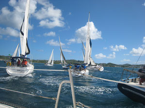 Mango Bowl Regatta start line