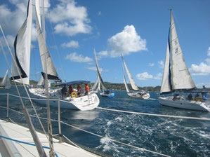 Bequia Easter Regatta start line