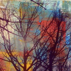 Lied des Baums