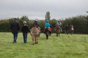Les ânes de Madame - Randonnée à thème en Sologne et en Val de Loire - Sortie à la découverte des plantes sauvages et comestibles de Sologne
