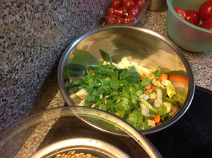 Gemüse-Brunoise (Würfel)