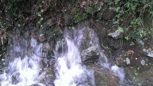 山の斜面の間から水があふれ出ています
