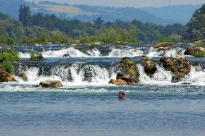 Schwimmen im Althrein