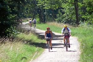 Fahrradtouren und Mountainbiking