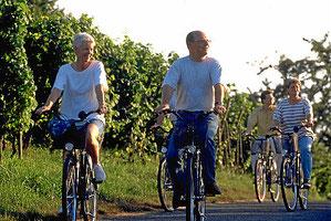 Radtouren durch die Weinreben