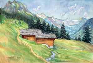 Nr.2123  Alphütten im Schächental, Uri