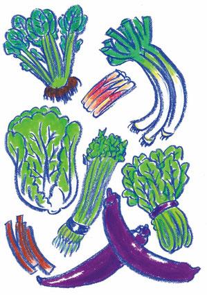 仙台伝統野菜たちを描いた応募作品です。