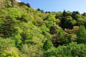 福島県の渓谷