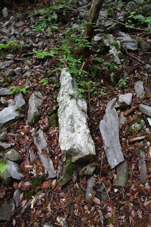 柱状節理の岩屑が大量にあった