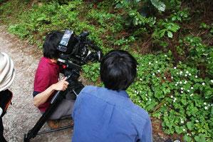 プロ用4Kビデオカメラで撮影するロケ隊スタッフ