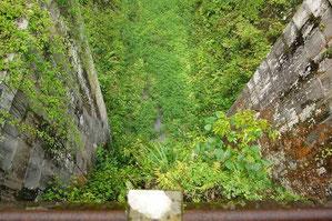 ダムの上から下流側を見下す