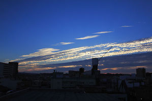 掛川市の朝