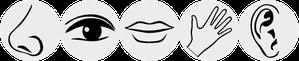 Wie erkenne ich Hochsensibilität. Coaching, Gesprächstherapie. Tagesseminar, Seminar, Gruppencoaching, Kurs und Tipps für hochsensible Personen. In Zürich Oerlikon und Zürich Oberland / rechtes Zürichsee-Ufer / Volketswil / Uster