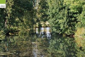 Rivière, à la campagne, Picardie