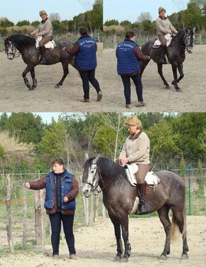 Cours individuel en équitation de travail (monte espagnole)