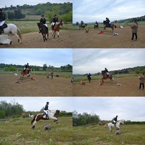 M.T Equidoma faisant passer les galops en dressage, obstacle, cross...