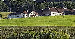 (c) Annahof