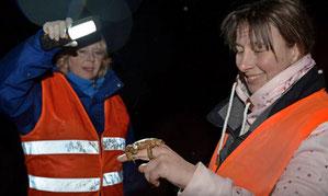NABU-Vorsitzende Britta Böhringer-Retter (links) und Kreisökologin Stefanie Kielhorn freuen sich über jede Kröte, die sie entdecken. Foto: Stefanie Pfäffle