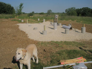 Building foundation (and my pal Duke!)