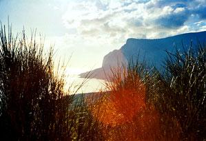 herrliche Ausblicke - man wähnte sich am Mittelmeer
