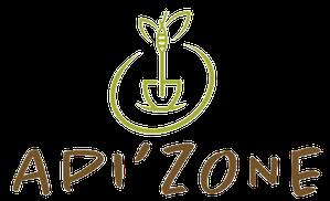 Logo APIzone