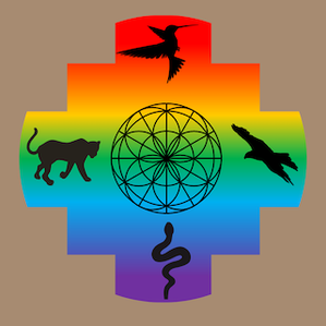 Medizinrad, Schamanische Ausbildung