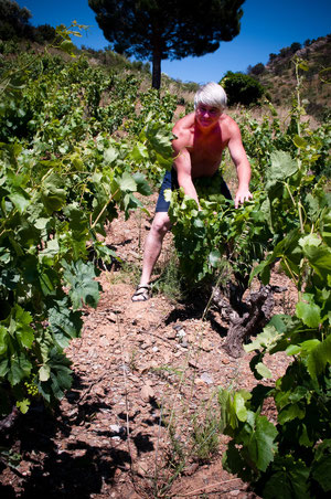 Luc Charlier viticulteur
