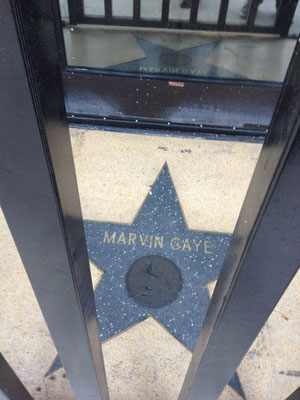 MARVIN...