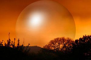 Die Sonne im Aufgang