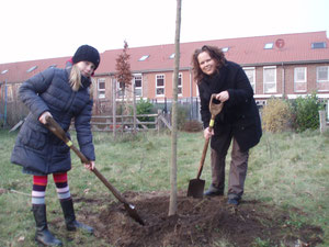 Gedächtnisbaumpflanzung Elmshorn Christa-Wähling-Weg Frühjahr 2012