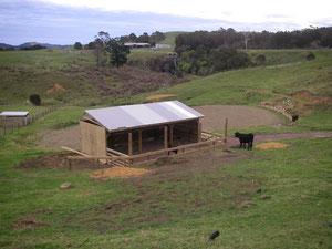Blick vom Haus auf den neuen Stall