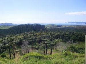 Blick vom Vulkan