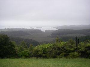 Aussicht vom Berg Richtung Paihia