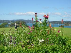 Garten vor dem Treaty House mit Blick nach Russell