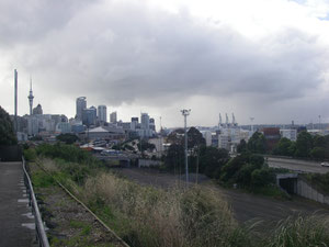 back in Auckland . . .