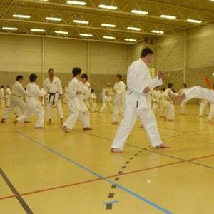 G-karateka Kristof Bracke op zijn eerste stage in Hasselt op 26-27 januari 2013