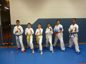 Onze karatespeelvogels