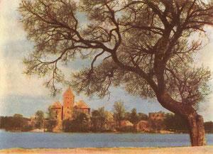 Salos pilis (XIV-XVa). Nuotr. P.Karpavičiaus / The Insular castle (14th-15th c.). Photo. P.Karpavičius