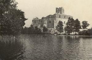 Trakų pilis. Metai ir nuotr. Autorius nežinomi / The Trakai Castle. Date and author unknown.