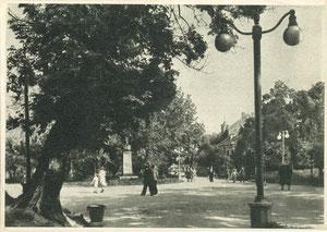 Puškino skveras apie1959m. Nuotr. Ch. Levino / Pushkin Square. Photo by Ch. Levin