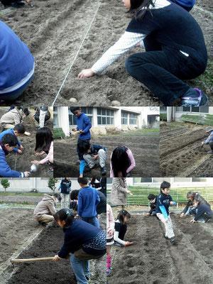 土と親しむの写真