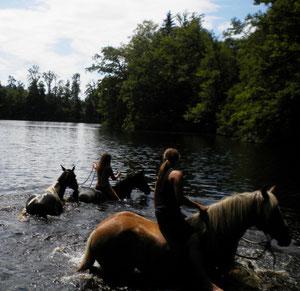 Im See bei Geigelbach mit Kimba und Romi im Schlepp