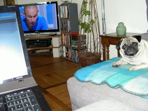 Herr Anton will wissen, warum in dem Text da hinten kein Hund vorkommt.