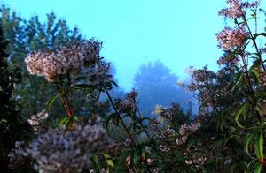21. September 2012 - Herbst